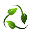 recycle symbol made of green rotating leaves vector image