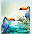 toucan watercolor tropic exotic summer vector image
