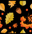 abstract autumn seamless pattern background vector image