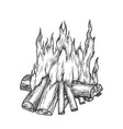 traditional burning firewood monochrome vector image vector image