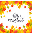 autumn background layout decorate with leaves vector image vector image