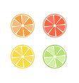 citrus fruit icon symbol set vector image vector image