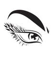female eye drawing long eyelashes vector image vector image