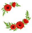 frame with red poppies isolated on white vector image