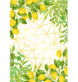 luxury lemon brunches and herbs background vector image