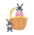 rabbits basket egg easter vector image vector image
