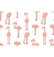 seamless pattern with pink flamingos vector image vector image