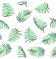 tropical palm leaves pattern vector image vector image