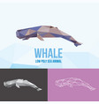 whale with triangle polygonal style vector image