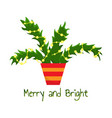 decorated christmas tree in a pot vector image vector image