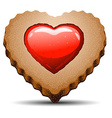 Heart shaped cookie on white background vector image vector image