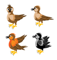 Much birds sparrow vector image vector image