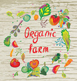 Organic farm banner with frame and texture vector image vector image