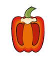 pepper vegetable half vector image vector image