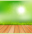 summer background sunny day green vector image