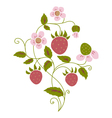 wild strawberry vector image vector image