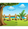 A big tree inside a fence vector image vector image