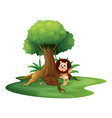 A lion standing beside an old tree vector image vector image