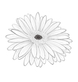 beautiful monochrome black and white gerbera flowe vector image vector image