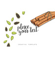 Beauty background with spice cinnamon cardamom vector image