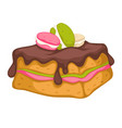 cake with chocolate topping decorated with baked vector image vector image