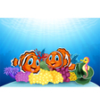 cartoon clownfish and seahorse with underwater vector image vector image