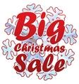 Christmas sales with snowflake vector image