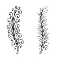 Doodling hand drawn amazing feathers vector image vector image