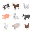 farm animals 3d icons set isometric view vector image