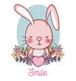 lovely bunny cartoon vector image