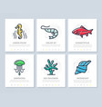 set of fish and sea food colored elements for vector image