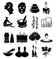 Spa icons set vector image vector image
