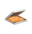 traditional italian pizza in cardboard box vector image