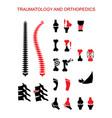 traumatology orthopedics vector image vector image