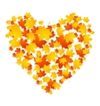 Autumn concept heart from maple leaves vector image