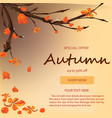 autumn sale banner background with fall leaves vector image vector image