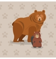 brown bear icon image vector image vector image