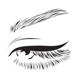 female eye drawing long eyelashes vector image vector image