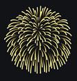 firework on night background anniversary bursting vector image vector image