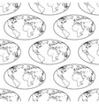 globe contour pattern vector image vector image
