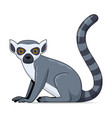 lemur animal sitting on a white background vector image vector image
