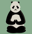 panda doing yoga vector image vector image