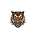 polygonal tiger head logo design vector image