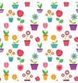 Seamless pattern of flowers in pots vector image
