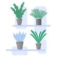 set pot flowers simple style vector image