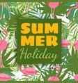 summer holidays card design with tropical plants vector image