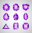 violet gem vector image vector image