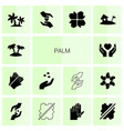 14 palm icons vector image vector image