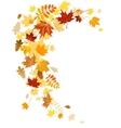 Autumn leaves swirl vector image