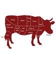 Beef cuts vector image vector image